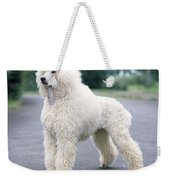 Standard Poodle Dog, Unclipped Weekender Tote Bag
