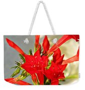Standing Cypress Bouquet  Weekender Tote Bag