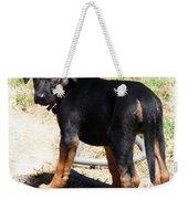 Standing Puppy Weekender Tote Bag