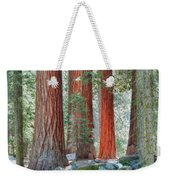 Standing Tall - Sequoia National Park Weekender Tote Bag