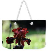 Standout Stand Tall Stand Proud Weekender Tote Bag