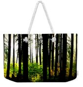 Stanley Park Triptych Right Weekender Tote Bag