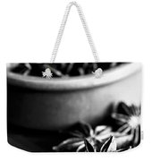 Star Anise Dish Weekender Tote Bag by Anne Gilbert