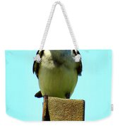 1 Swallow Never Makes A Summer Weekender Tote Bag