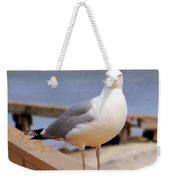Stare Of A Seagull Weekender Tote Bag