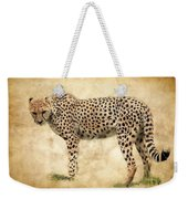 Stare Of The Cheetah Weekender Tote Bag