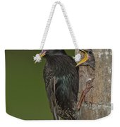 Starling And Young Weekender Tote Bag
