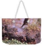 Starlings Fight Weekender Tote Bag