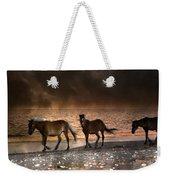 Starry Night Beach Horses Weekender Tote Bag