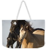 Stealing The Mare Weekender Tote Bag