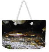 Steelhead Resting In The Shallows Weekender Tote Bag