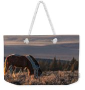 Steens Sundown Weekender Tote Bag