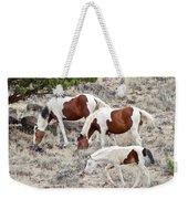 Steens Wild Paints Weekender Tote Bag