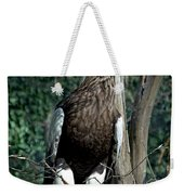 Stellers Sea Eagle Weekender Tote Bag