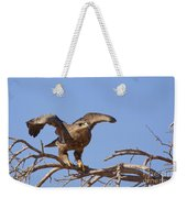 Steppe Eagle Aquila Nipalensis 1 Weekender Tote Bag