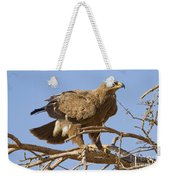 Steppe Eagle Aquila Nipalensis 2 Weekender Tote Bag