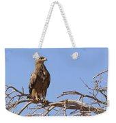 Steppe Eagle Aquila Nipalensis Weekender Tote Bag
