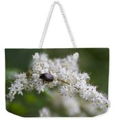 Stiff Dogwood Wildflowers And Beetle Weekender Tote Bag