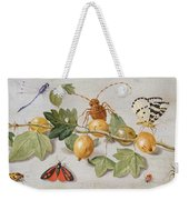 Still Life Of Branch Of Gooseberries Weekender Tote Bag