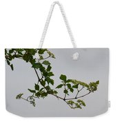 Still Water Reflection Weekender Tote Bag