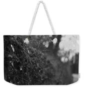 Stone Forest Trail Weekender Tote Bag