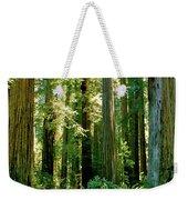 Stout Grove Coastal Redwoods Weekender Tote Bag
