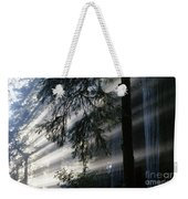 Stout Grove Redwoods With Sunrays Breaking Through Fog Weekender Tote Bag