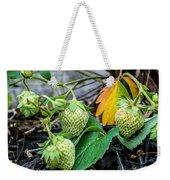 Strawberries - Soon To Be Picked Weekender Tote Bag