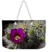 Strawberry Hedgehog  Weekender Tote Bag