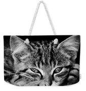 Stray Kitten Weekender Tote Bag