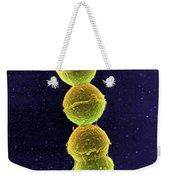 Streptococcus Bacteria Sem Weekender Tote Bag by Science Source