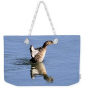 Stretched Out Weekender Tote Bag