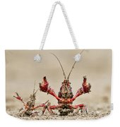 Striped Crayfish  Weekender Tote Bag