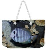 Striped Fish Weekender Tote Bag