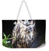 Striped Owl Weekender Tote Bag