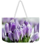 Striped Purple Crocuses In The Snow Weekender Tote Bag