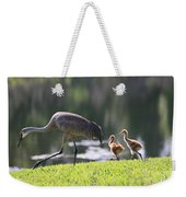 Stroll By The Pond Weekender Tote Bag