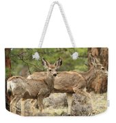 Strolling Through The Rockies Weekender Tote Bag
