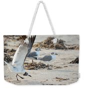 Strutting Seagull On The Beach Weekender Tote Bag