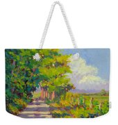 Study For Afternoon Shadows Weekender Tote Bag