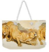 Study For Daniel In The Lions Den Weekender Tote Bag