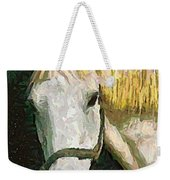 Study Of The Horse's Head Weekender Tote Bag
