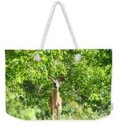 Stumble Upon  Weekender Tote Bag