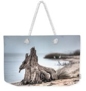 Stump Dragon Weekender Tote Bag
