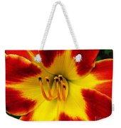 Stunning Daylily  Weekender Tote Bag