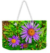 Subalpine Daisy By Vidae Falls In Crater Lake National Park-oregon  Weekender Tote Bag