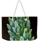 Succulent Bloom Weekender Tote Bag
