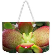 Succulent Plant Upclose Weekender Tote Bag