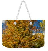 Sugar Maple 3 Weekender Tote Bag