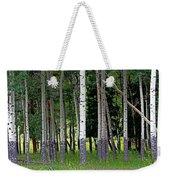 Summer Aspen Weekender Tote Bag